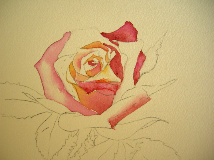 How to paint a rose step no 1 debbie waldorf johnson for How to paint a rose in watercolor step by step