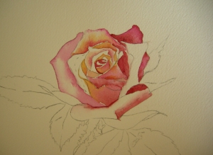 Brushwork on Rose Petals