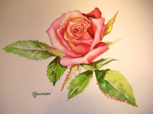Finished Rose in Watercolor