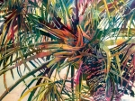 Palm Splash